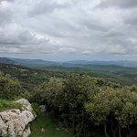 Photo de L'Auberge Provençal
