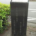 DSC_5192_large.jpg