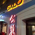 Photo of Galo Macau