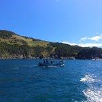 Praia dos anjos - vista da embarcação