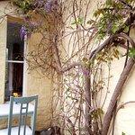 Dettaglio della veranda con glicine