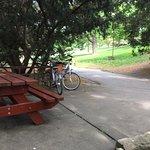 Fotografie: Praha Bike -  Bicycle Tours & Rentals