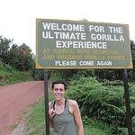 ultimate Gorillas Trekking Family in Ruhija Bwindi Impenetrable Forest National Park