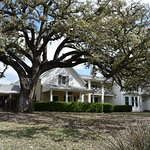THE TEXAS WHITE HOUSE AND THE CABINET OAK