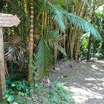 Photo of PETAR - Parque Estadual Turistico do Alto Ribeira