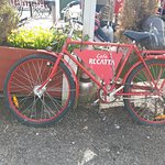 Cafe Regatta Photo