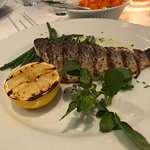 Delicious fish of the day