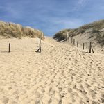 Photo of Kennemerduinen an der Nordsee