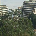 ภาพถ่ายของ Putrajaya Lake