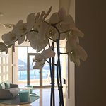 Reception Orchids looking towards the bar terrace and bay view...