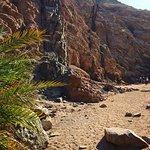 Photo of Sharm Station Tours