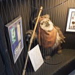 an ewok from the star war movie. This is only one item which is really cool to see.