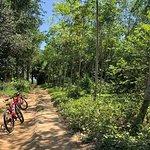 Photo de Amazing Bike Tours