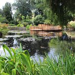 beautiful pond in the gardens