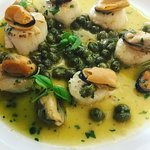 Seared scallops with mussels and capers