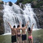 صورة فوتوغرافية لـ Tamarin Falls