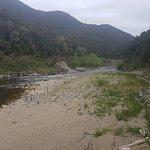 Outram Glen Scenic Reserve