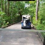 Фотография Celebration Golf Club