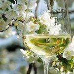 Vasta scelta di vini al bicchiere
