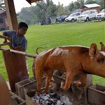 Pig Roast, join in the fun with family and friends