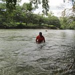 Swim and enjoy the cool river