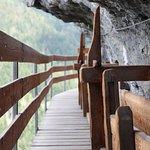 Ces ponts en bois