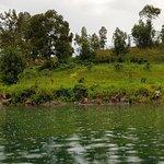 Zdjęcie Lake Kivu