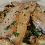 I went back to get a picture of the Shrimp & Grits... but the Trout distracted me.  Excellent!