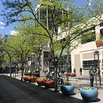 Photo of 16th Street Mall