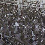 1877 Tall Ship ELISSA의 사진