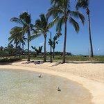 Photo of Airlie Beach Lagoon
