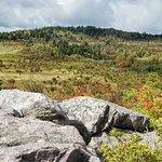 Grayson Highlands State Park의 사진