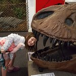 Foto de Dinostar - Hull's Dinosaur Experience