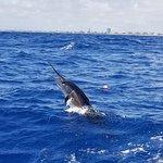 Angler Management Sportfishing Φωτογραφία
