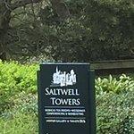 Foto di Saltwell Park