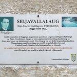 Foto Seljavallalaug