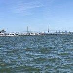 Adventure Harbor Tours照片