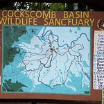 Φωτογραφία: Cockscomb Basin Wildlife Preserve