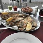 Foto de Bar Restaurante El Pulpo
