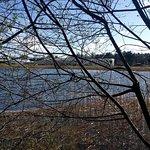 Φωτογραφία: Oak Park Forest Park