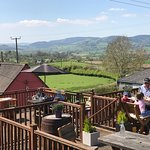 The deck @thejollyfrog in summer