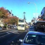 Public bus and tourist bus