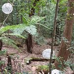 Sculpture at Scenic World (balls made out of table fan grill)
