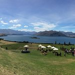 Rippon Winery