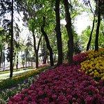 صورة فوتوغرافية لـ Emirgan Park