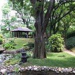 Billede af Jevremovac Botanical Garden
