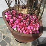 Finefood Penzion Berc Foto