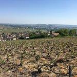 Vistas from Hautvillers
