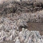 particolare delle rocce