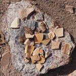 Pottery Shards - Don't Take Them